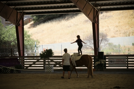 Woodside Vaulting Fest - June 2013-41