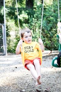 stay gold shep-13
